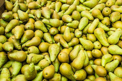 Closeup of just picked pears Stock Photography