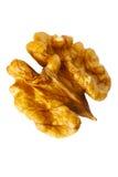 Closeup kernel walnut isolated on white Royalty Free Stock Image
