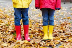 Closeup of kids legs in rubber boots dancing and walking through fall leaves. Two little children playing in red and yellow rubber boots in autumn park in Royalty Free Stock Images