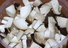 Closeup king oyster Mushroom or Pleurotus Eryngii cut into piece. S in the clear plastic cup Stock Photo