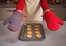 Closeup on kitchen gloves showing by young housewife and christma Stock Images