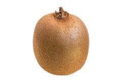 Closeup of a kiwifruit Royalty Free Stock Photos