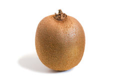 Closeup of a kiwifruit with shadow Royalty Free Stock Images
