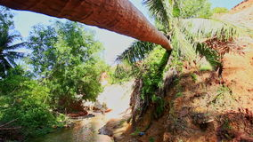 Closeup Large Palm Tree Fell across Fairy Stream stock footage