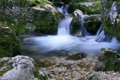 Closeup of the le Furon creek Royalty Free Stock Photos
