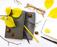 Closeup of leather pen case, notebook and glasses on white background. Autumn decoration. Top view, flat lay Stock Photography