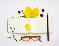Closeup of leather pen case, notebook and glasses on white background. Autumn decoration. Top view, flat lay Royalty Free Stock Images