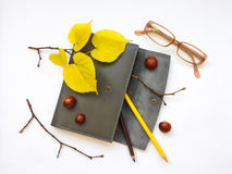 Closeup of leather pen case, notebook and glasses on white background. Autumn decoration. Top view, flat lay Royalty Free Stock Image