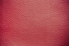 Closeup of leather texture. Stock Images
