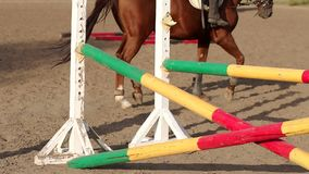 Closeup of legs of horse in training at horse farm. Close-up of a professional horse hooves while training. Close-up of legs of a horse in training at a horse stock footage
