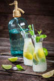 Closeup of lemon drink with mint leaf and citrus f Stock Images
