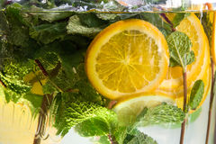 Closeup of lemon and mint sparkling water. Slices of lemon Stock Photos