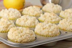 Lemon Muffins Closeup Stock Photos