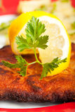 Closeup of a lemon slice Stock Photography