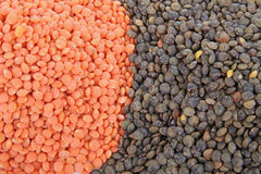 Closeup on lentils Royalty Free Stock Image