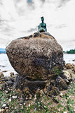 Closeup of a life-size bronze statue, Girl in a wetsuit. life-si. Girl in a Wetsuit is a life size bronze sculpture of a woman in a wetsuit located on a rock in Royalty Free Stock Photo