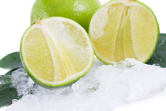 Closeup lime and ice Royalty Free Stock Photos