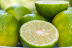 Closeup Lime slice Royalty Free Stock Image