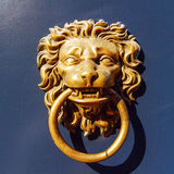 Closeup of Lion Door Knocker Stock Image