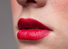 Closeup lips make-up zone. Mat red. Stock Image