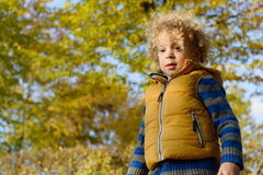 Closeup of little  cute boy with blonde curly hair Royalty Free Stock Photo