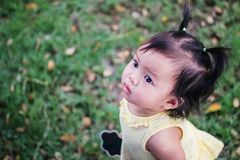 Closeup little girl on grass floor and look up at the space of picture in the garden view background stock photography