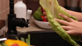 Closeup of little girl hands washing lettuce leaf stock footage