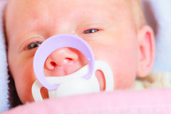 Closeup of little newborn lying with teat in mouth Stock Image