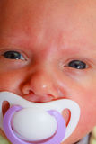 Closeup of little newborn lying with teat in mouth Stock Photography