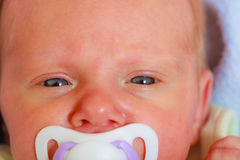Closeup of little newborn lying with teat in mouth. Infant care, beauty of childhood concept. Little newborn baby lying calmly in bed with teat in mouth, closeup Royalty Free Stock Photography