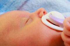 Closeup of little newborn sleeping with teat in mouth Stock Images