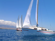 Closeup of little sailing yach Stock Photography