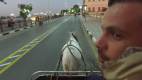 Closeup of local man riding horse cart on urban road in Luxor. LUXOR, EGYPT - FEBRUARY 10, 2016: closeup of local man riding horse cart on urban road in Luxor stock footage
