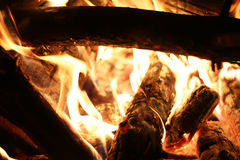 Closeup log fire. In night fireplace. Burning flame. Barbecue coal blazing Royalty Free Stock Photos