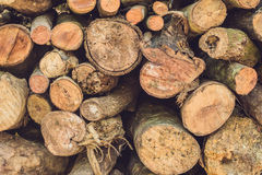 Closeup of logs of trees in nature, pile of wood logs ready for winter in the forest, firewood as a renewable energy source waitin. G to be transported royalty free stock photo