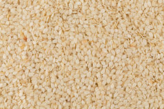 Closeup of lots of sesame seeds Stock Photography