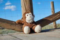 Closeup of a lovely brown and white toy monkey smiling happily sitting on a wooden floor and leaning comfortably on a wooden raili. Closeup of a lovely brown and Royalty Free Stock Photos