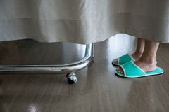 Closeup low section of a person`s feet wearing green slipper beh royalty free stock image