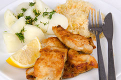 Closeup for lunch set with cod fish Stock Image