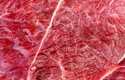 Closeup macro background texture of red beef lamb meat Stock Image