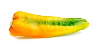 Closeup macro of gorgeous spicy capsicum pepper Stock Images