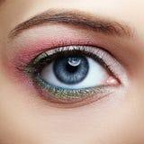 Closeup macro image of human woman eye with pink and green makeu Royalty Free Stock Photo