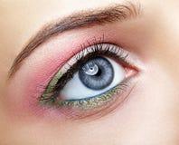 Closeup macro image of human woman eye with pink and green makeu Royalty Free Stock Image