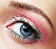 Closeup macro image of human woman eye with pink and green makeu Royalty Free Stock Images