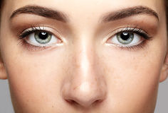 Free Closeup Macro Portrait Of Female Face. Human Woman Open Eyes Wit Stock Photography - 98095792