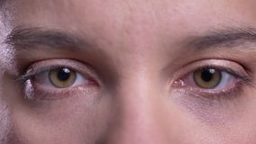 Closeup macro shoot of adult female face with brown eyes looking straight at camera blinking in motion.  stock video