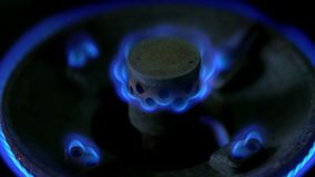 Closeup macro shot of the blue flames from the burner of a gas stove. Slowly adjusting fire level on a gas stove and turning off. Liquid petroleum gas stock video footage