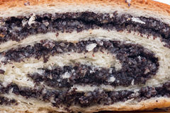 Closeup macro view strudel with poppy seeds Royalty Free Stock Images