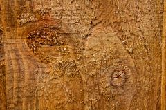 Closeup macro of wooden scratched background. Brown painted wooden background. Dark old wooden background painted in brown. Top vi royalty free stock photography