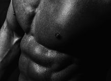 Closeup of male delightful torso Royalty Free Stock Photo